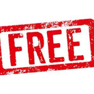 SEO Audit - FREE